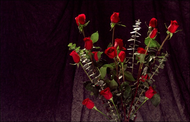 _bunch_of_red_roses