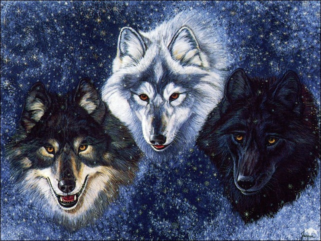 Winter_Wolves