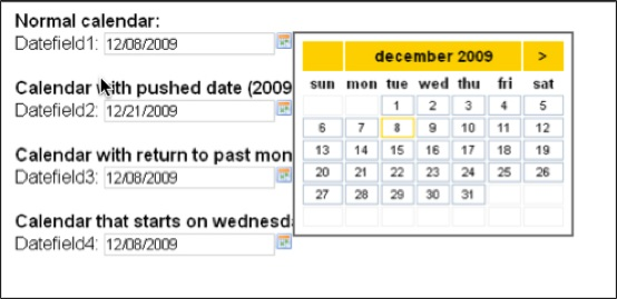 calendar-date-picker-date-field