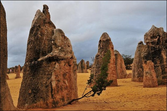 the-pinnacles