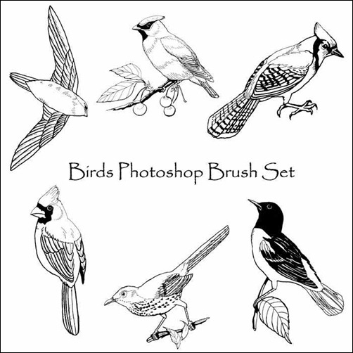 birds-photoshop-brush-set