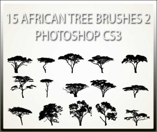 15-african-tree-brushes-