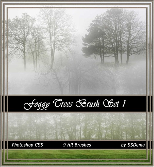 foggy-trees-brsuhs-set