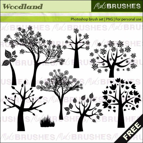 woodland-brushes