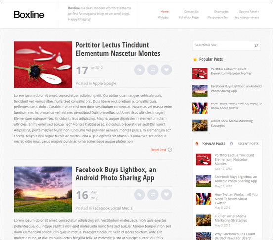 boxline-news-theme