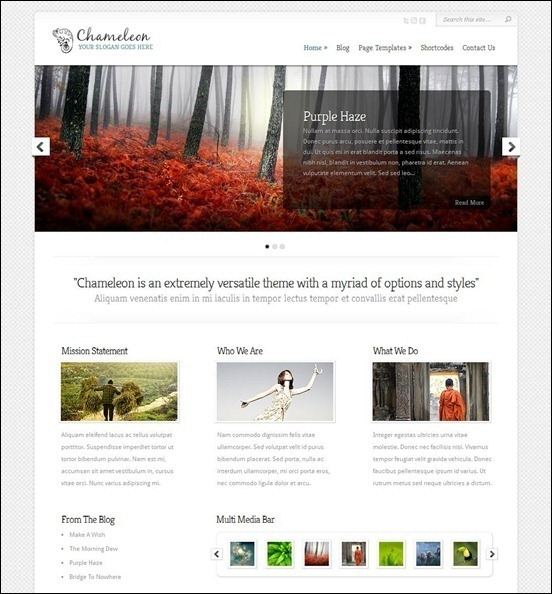 CHAMELEON Minimal WordPress Theme