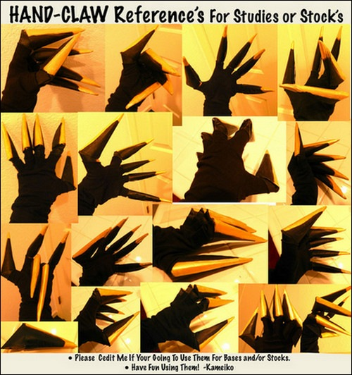 vector-Hand-Claw-References-for-Both-Studies-and-or-Stock-sets