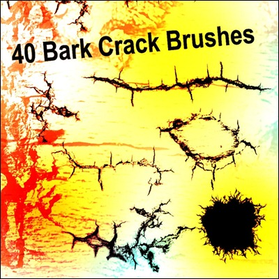 bark-crack-brushes