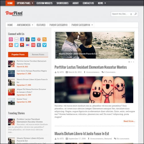 truepixel best wordpress theme