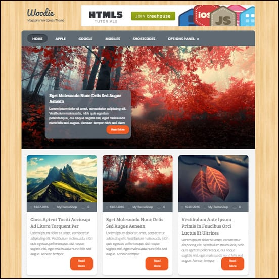 Woodie Retro WordPress Theme