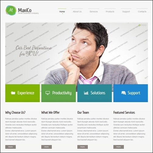 White Consulting business website template
