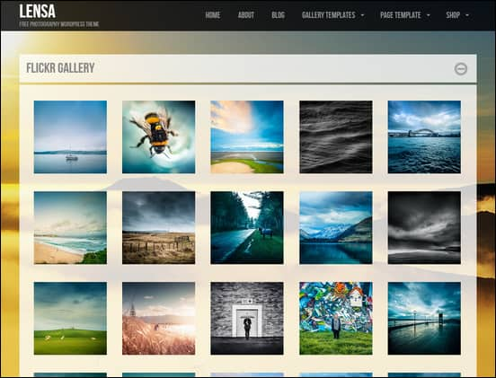Lensa is a cool WordPress gallery theme with many gallery layout options.