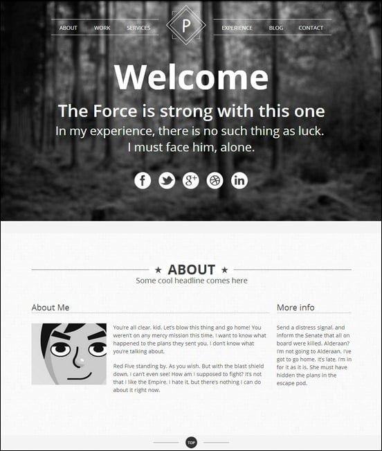 viewpoint-responsive-single-page-portfolio[3]