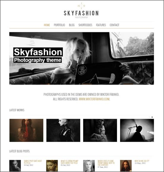 Skyfashion - Minimalist WordPress Theme
