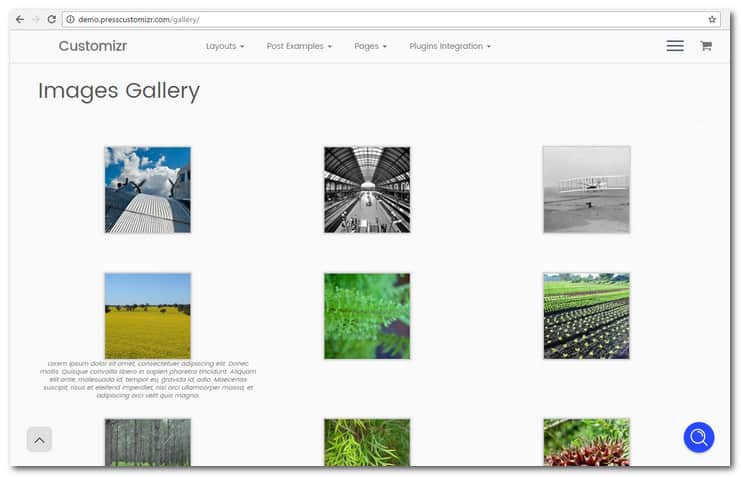customizr image gallery