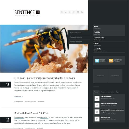Sentence is a responsive Blog and Portfolio Theme (try resizing your browser), suited for users who want to run a professional or personal blog and in addition to that want to showcase their work on a neat portfolio site