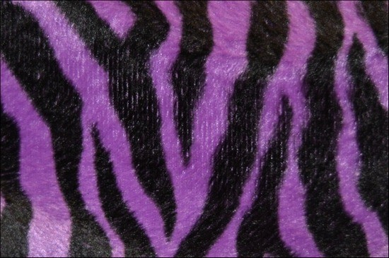 PurpleAndBlackZebraPrint