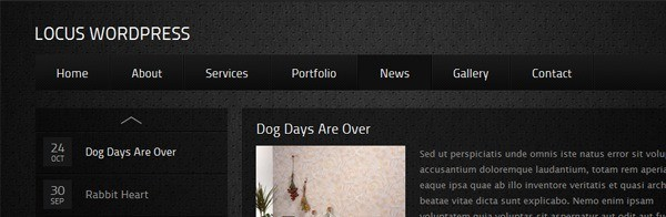 45+ Excellent Dark WordPress Themes – Want Your Website to ROCK?