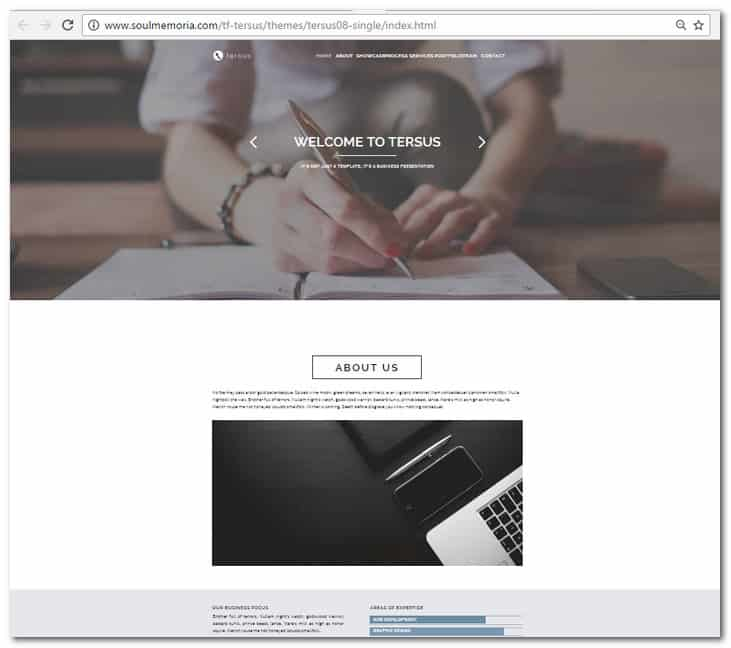 30 brilliant premium and free adobe muse templates for 2017 tersus business portfolio parallax muse template flashek Image collections