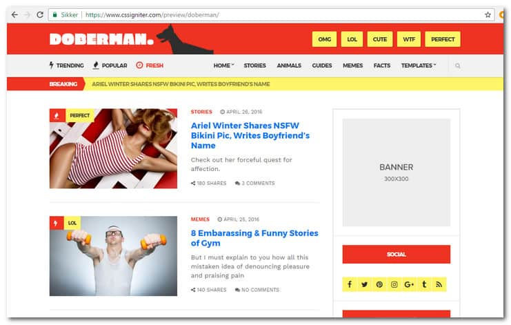 Doberman WordPress theme