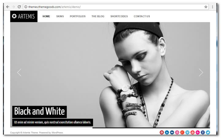 Artemis Photography Gallery Portfolio Theme