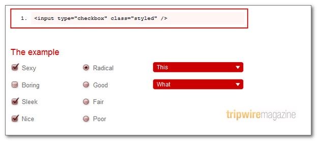 custom-checkboxes-and-radio-buttons
