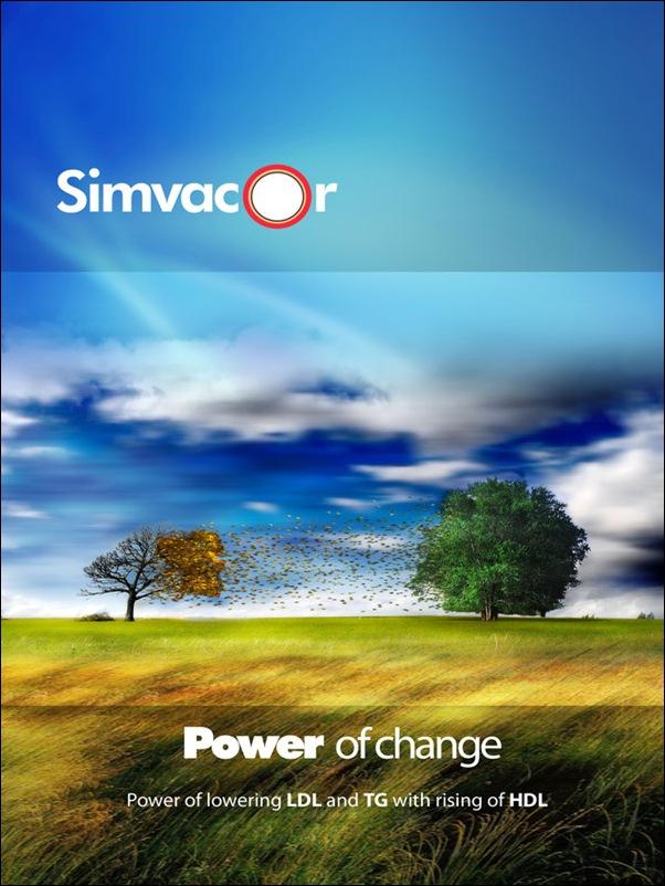 Simvacore_Brochure_cover_by_AlGafy
