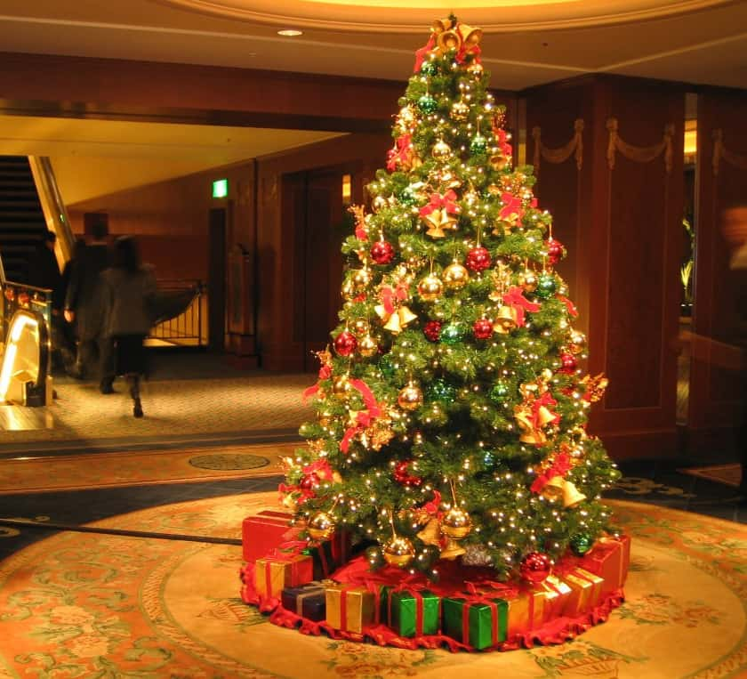 24 Stunning Christmas Tree Images – Tripwire Magazine