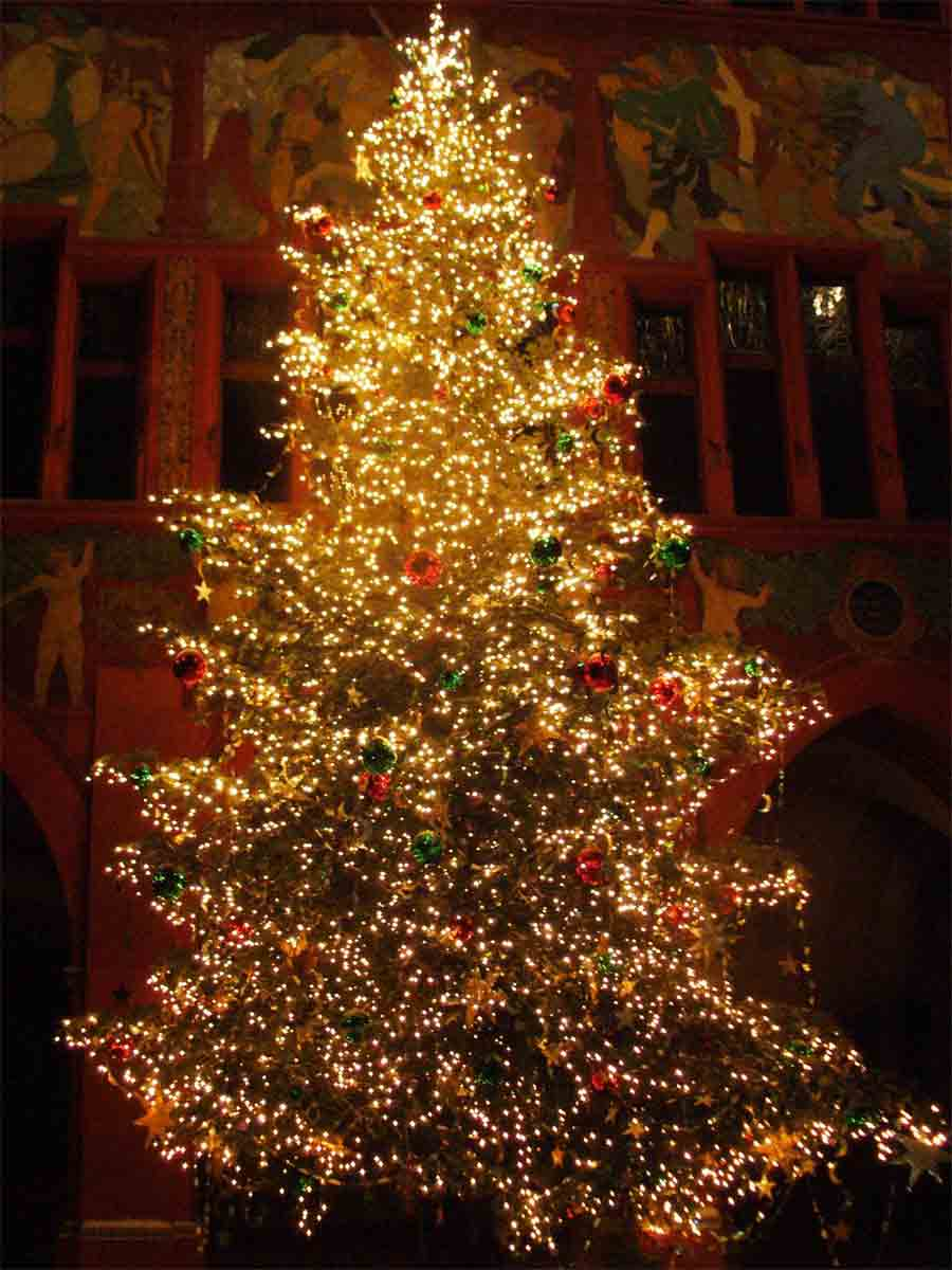 christmas-tree-pics-0203