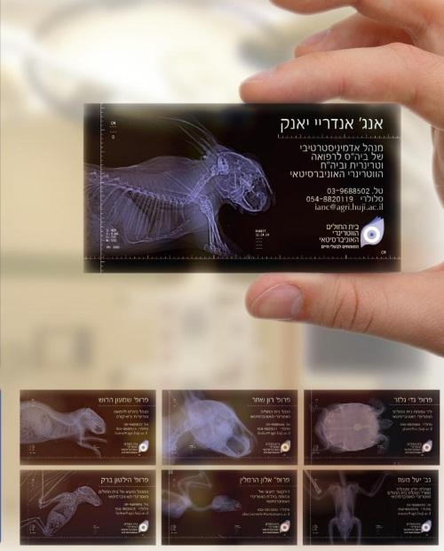Vets X-Ray Card
