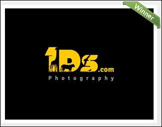 Photography Website Logo