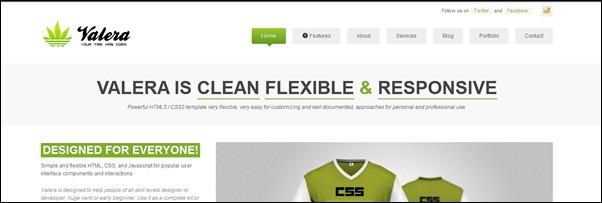 premium-responsive-html-website-templates
