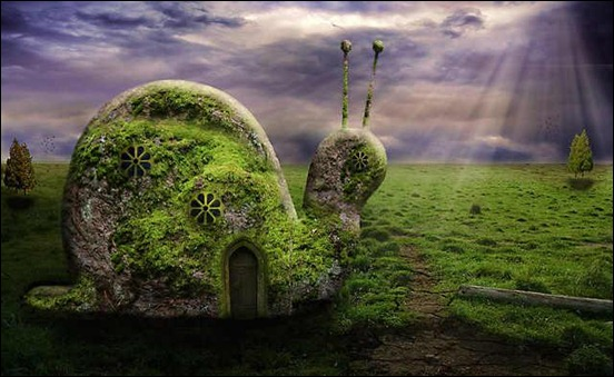 snail-home