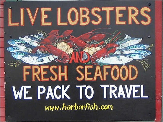 harbor-fish