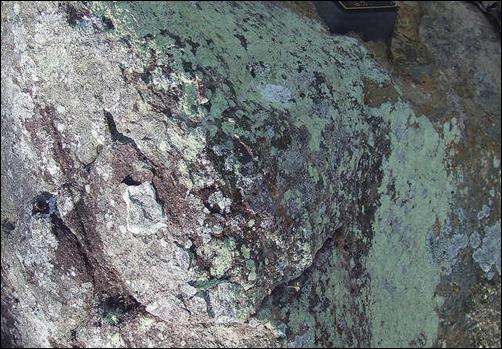 rock-moss-texture