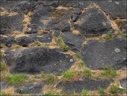 rock-texture[15]