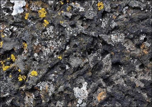 seashore-rock-texture