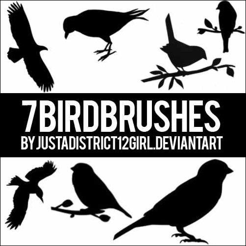 7-brushes