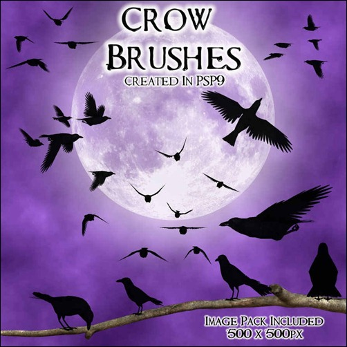 crow-psp-9-brushes