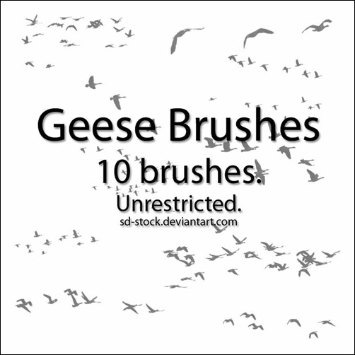 geese-brushes