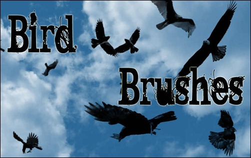 photoshop-brushes-birds