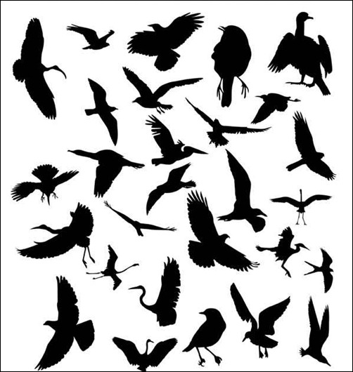 silhouette-bird-brushes
