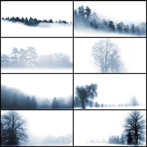 beyond-the-mist
