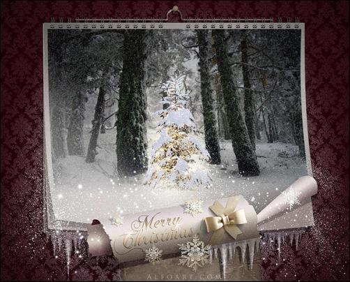 fairy-christmas-night