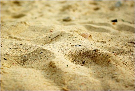 sand-texture[20]