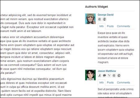 authors-widget