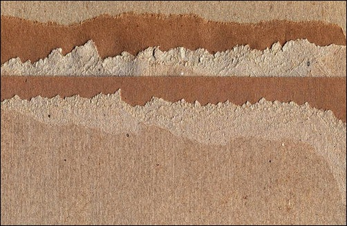 cardboard-lite-4