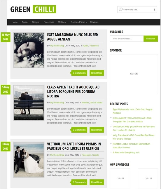 Greenchili is a clean, blog style WordPress theme
