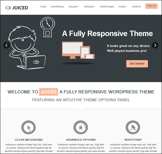 juiced-responsive-wp-theme