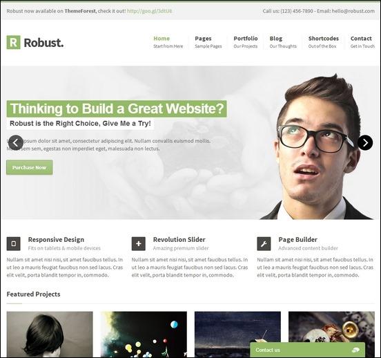 robust-responsive-multipurpose-wordpress-theme